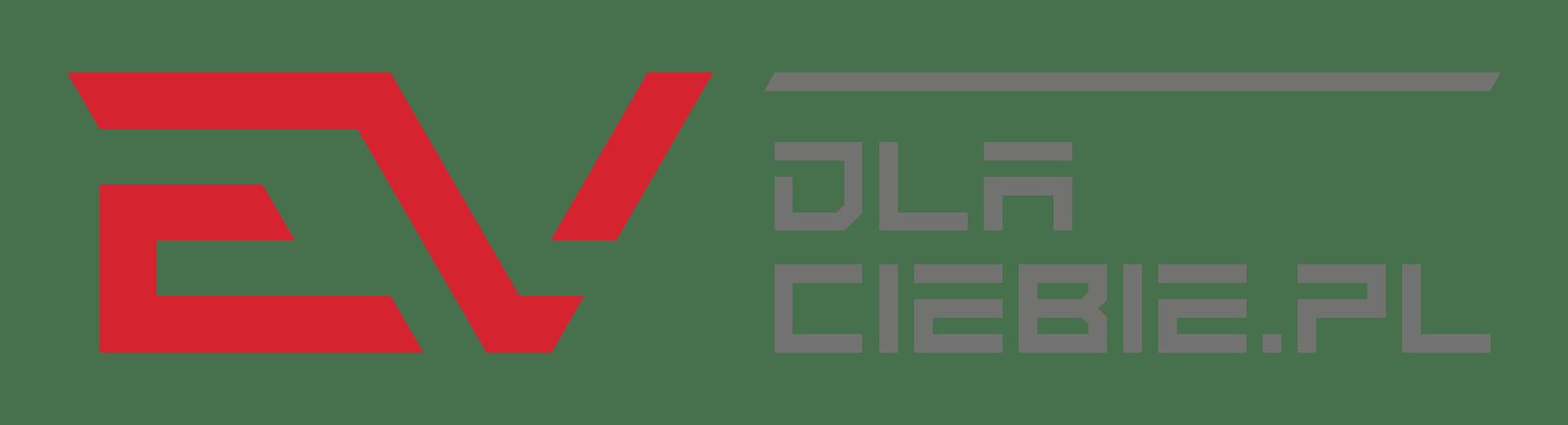 Niezależny dealer samochodów elektrycznych (EV)